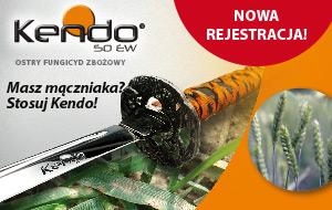 kendo-300x190