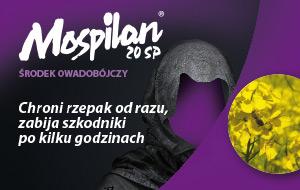 mospilan-rzepak-300x190