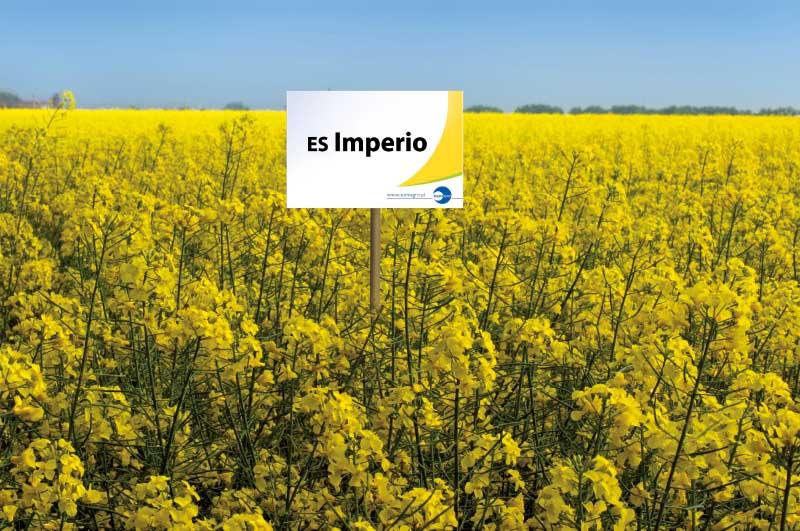 imperio-featured