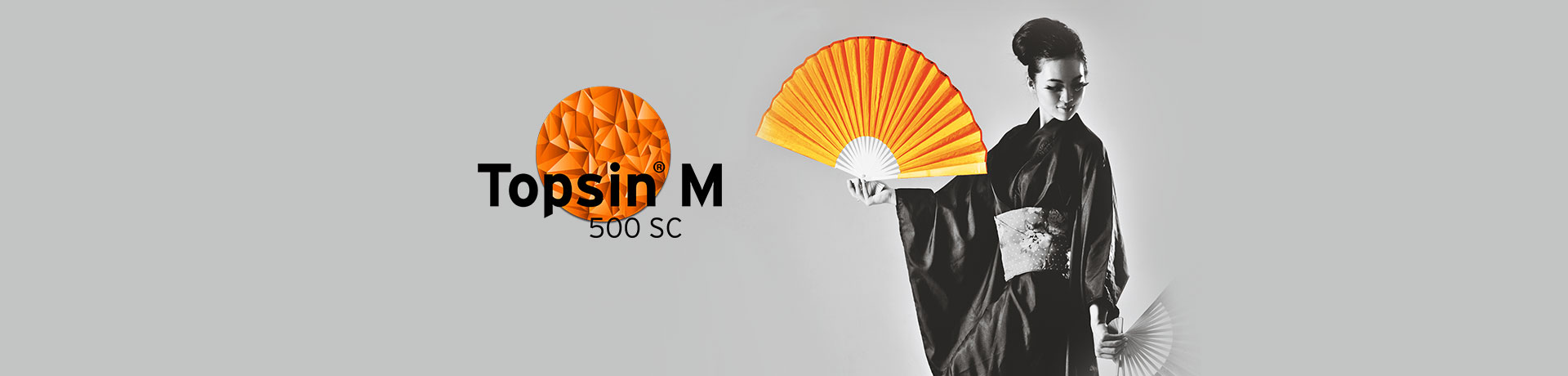 Topsin M 500 SC