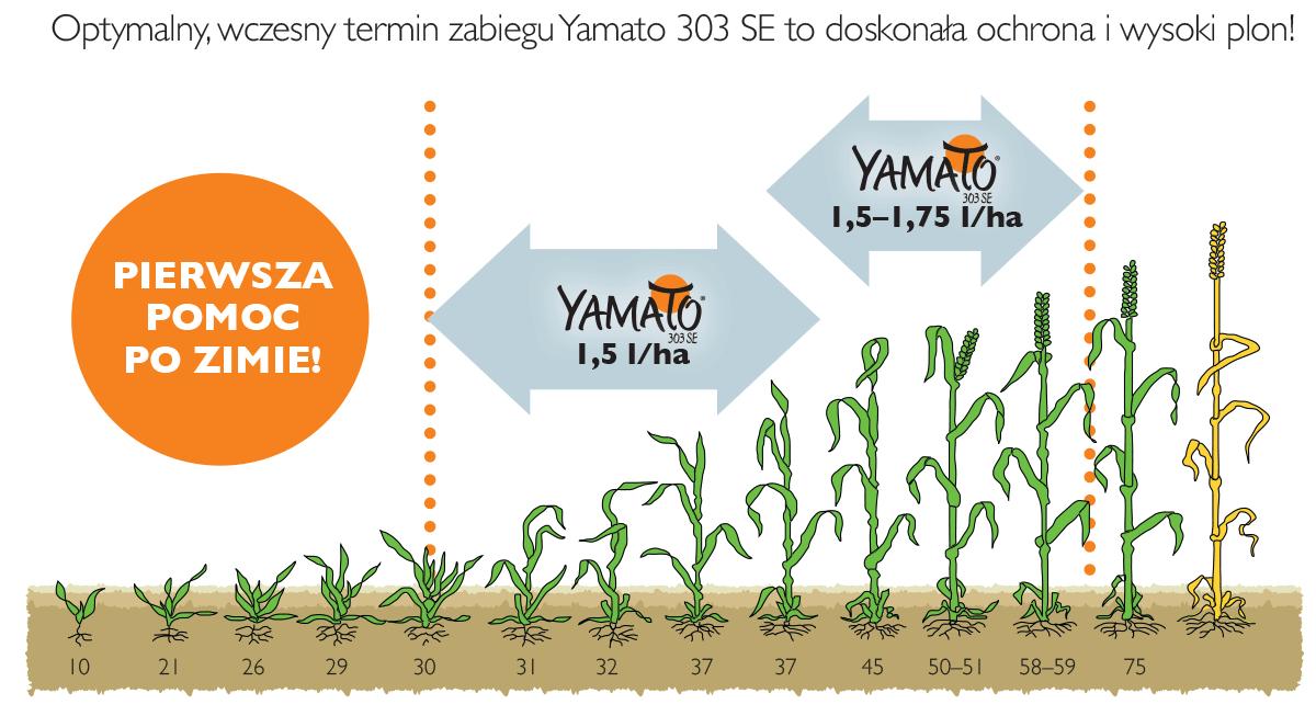 stosowanie yamato w pszenicy