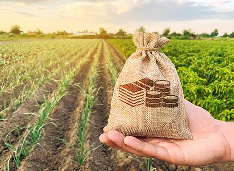 Aktualne akcje promocyjne Sumi Agro Poland