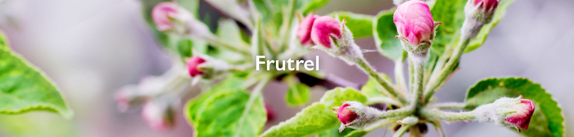 frutrel
