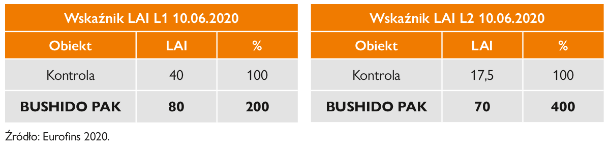 bushido wskaznik zielonosci