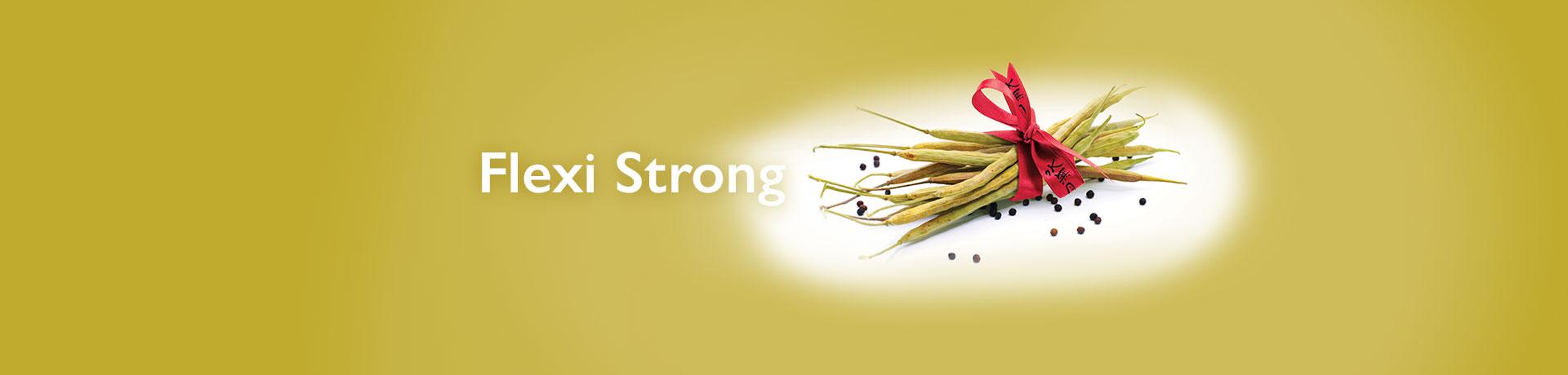 flexi strong