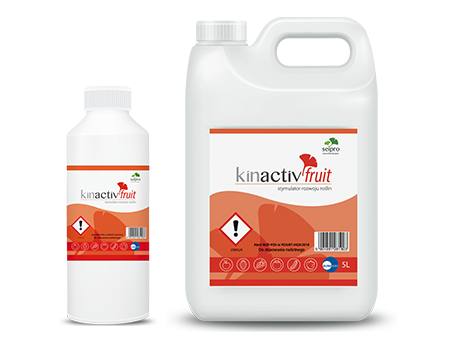 Kinactiv Fruit