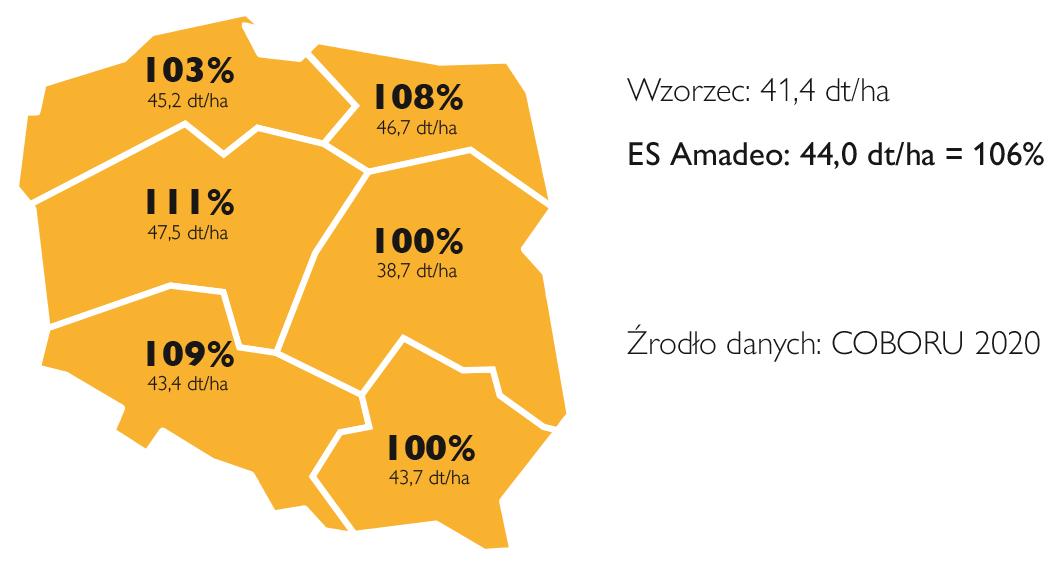 es amadeo doświadczenia porejestrowe 2020